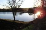 Únorová procházka k rybníku